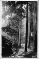 CARTE Photo Vers 1910 LES VOSGES (photographie JACQUEL REMIREMONT) - Remiremont