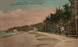 PORTUGAL. PRAIA DA POLANA PALMEIROS - Açores