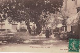 Lot-15 - Alpes Maritimes - Pegomas - La Place - Frankreich