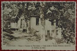 """Postcard Of The    Nellas - Caldas De Felgueira / Casa Onde Tomaz Ribeiro Escreveu """" A Delfina Do Mal """" ( Lote Nº 1433 ) - Viseu"""