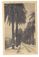 CPA 83 HYERES Avenue Beauregard Sous La Neige Hiver 1928-1929 Pas Courante - Hyeres