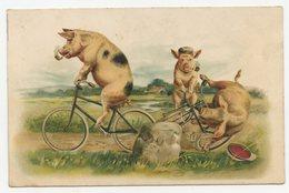 Cochons Humanisés.une Sortie à Vélo. Cochon Fumant La Pipe.pig.pigs. - Pigs