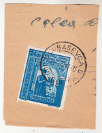 COVER FRAGMENT / FRAGMENT De LETTRE : ROMANIA - TRANSNISTRIA - CANCELLATION : LUBASEVCA / JUD. GOLTA - 1943 (ae673) - Lettres 2ème Guerre Mondiale