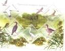 2004.  Ukraine, Birds, Danube's Nature Reserve, S/s, Mint/** - Ucraina