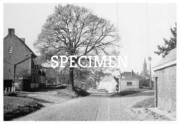42 Een Sinds 1968 Verdwenen Dorpsgezicht Met De Prachtige Oude Linde En Brug - Sint-Joris - Beernem