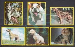 Portugal 1977 Cromos A Gaiola De Noé Editorial Rolan Madrid Chromos Animais Fauna Dog Chien Cão Faune - Animals