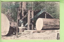 Lumbering In British Columbia, Thomson, Vancouver. Bûcheron, Scierie. TBE. 2 Scans - Vancouver