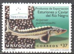 Uruguay - Sturgeon - Kaviar - Fish - MNH - Briefmarken