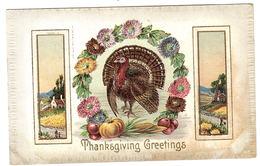 THANKSGIVING GREETINGS - TURKEY - DINDE - Thanksgiving