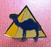 Camel - Chameau Pyramide Jaune - Merken