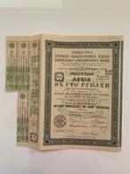 ACTION Russia Société De Briansk 20 Juillet 1873 Sanctionné Par Sa Majesté L'Empereur ALEXANDRE II TB 2 Scans - Russia