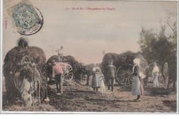 ILE DE RE : Chargement Du Varech - Très Bon état - Frankreich
