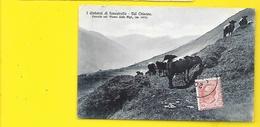 I Dintorni Di Fenestrelle Val Chisone Italie - Zonder Classificatie