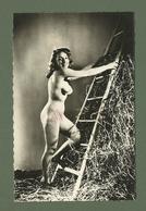 CARTE POSTALE NU A L ECHELLE  EROTIQUE SEINS NUS - Beauté Féminine D'autrefois (1941-1960)