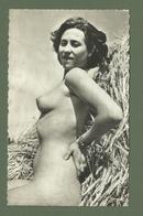 CARTE POSTALE NU DANS LES BLES  EROTIQUE SEINS NUS - Beauté Féminine D'autrefois (1941-1960)