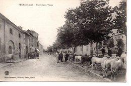 Loire : Feurs : Marché Aux Veaux - Feurs