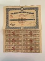 ACTION Indochine Société Du Domaine De Kébao 1924 TB - Mines