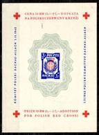 Pologne Deux Blocs-feuillets Croix-Rouge Dachau Neufs *. B/TB. A Saisir! - Blocs & Feuillets