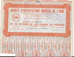 2 Actions : Société D'Exploitations Minières De L'Inini  à CAYENNE - Mines