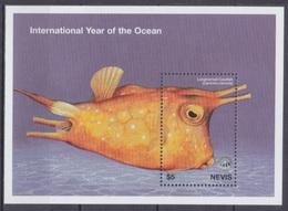 1998Nevis1269/B145Sea Fauna - Vie Marine
