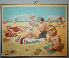 CALENDRIER ALMANACH DES POSTES ET TÉLÉGRAPHES 1957 PTT ILLUSTRATEUR HAECK FAMILLE A LA PLAGE OBERTHUR - Calendarios