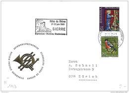 """128 - 49 -  Enveloppe Avec Oblit Spéciale """"Fêtes Du Rhône Sierre 1969"""" - Marcophilie"""