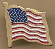 Pin's Drapeau états-unien Flottant Au Vent USA United States Of America - Administración