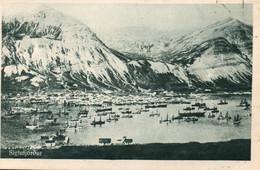 Islande - Siglufjördur, Höfnin (le Port) - Carte Non Circulée (Missioni Monfortane Islanda) - IJsland