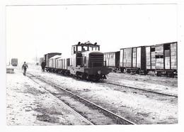 77 Egreville PHOTO Train Locotracteur Diesel Wagons Ligne Montereau Château Landon Le 18 Octobre 1952 VOIR DOS - Trenes