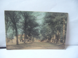 POITIERS 86 VIENNE PROMENADE DES COURS CPA COLL.H.B.182 - Poitiers