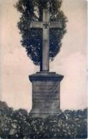 France - 67 - Wissembourg - Weissenburg - Denkmal Der Königs-Grenadiers N° 7 - Wissembourg