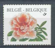 NB - [153876]TB//**/Mnh-N° 2733a, ND/Imperf à Droite, Rhododendron Simsii, Azalée 'Madame Haerens A.', Fleurs, Tarif Per - Belgique