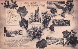 89 - Souvenir De L Yonne - Auxerre- Joigny - Avallon - Tonnerre - France