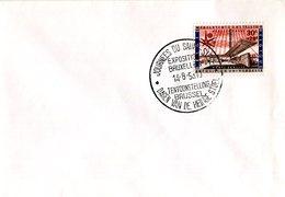 14158154 Belgium 19580814 Bx Expo58; Journées Du Saint-Siège; Pli - 1958 – Brussels (Belgium)
