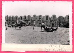 Photo Tunisie - Médenine - Les Rhorfas - Dromadaire - Animée - LUGDA LUMIERE - Afrika