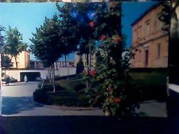 FIORENZUOLA D' ARDA - SCUOLE MEDIE N1970 HP8629 - Piacenza