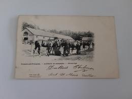 BRASSCHAET-POLYGONE Artillerie De Campagne  Abreuvage - Brasschaat