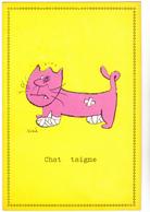 SINE  - Ed Pulcinella  - Humour CHAT  Chat Taigne Chataigne  -   CSPM  10,5x15  BE Neuve - Sine