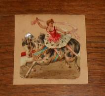 Découpi  XIXe. Une Cavalière Dans Un Cirque. - Animaux