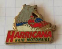 Pin's - HARRICANA - Raid Motoneige - Arthus Bertrand - Wintersport