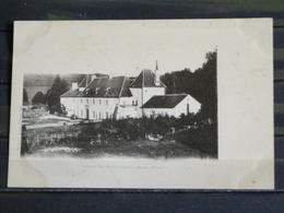 Z29 - 19 - Saint-Frejoux - Chateau De Bonnaygues (Ancien Prieuré)-  Edition Eyboulet , Ussel - Ussel