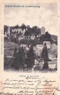 CPA Larochette (Luxembourg)  Le Château Et Le Village       Ed Bernhoeft  Dos Précurseur - Larochette