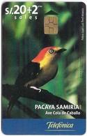 Peru - Telefónica - Pacaya Samiria - Ave Cola De Caballo, Chip Gem5 Red, 20+2Sol, 11.2000, 50.000ex, Used - Peru