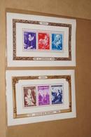 RARE Lot De 2 Blocs Feuillets,neuf Avec Gomme Sans Charnière,collection - Blocs 1924-1960