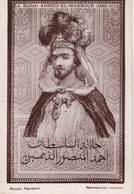 CPA   Le Sultan Ahmed El Mansour  (Maroc )   Portrait   Ed Flandrin  TBE - Non Classés