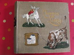 Album Vide Pour Chromos Liebig (50 Séries). Vers 1890-1900 - Albums & Catalogues