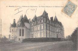 37-NOUZILLY-CHATEAU DE L ORFRASIERE-N°429-E/0153 - Autres Communes