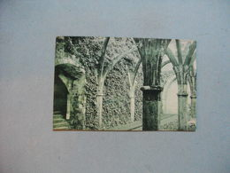 SAINT MICHEL En L'HERM  -  85  -  Ruines De L'Abbaye  -  Vendée - Saint Michel En L'Herm
