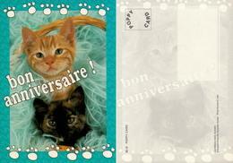 2 Chatons Bon Anniversaire - Chats