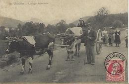 BELGIQUE - TRES RARE - VIELSALM - 1906 - Vielsalm